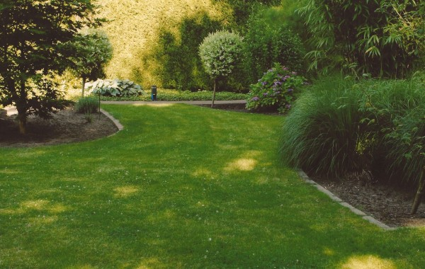 Orca Tree & Lawn Care ~ Landscaping #4